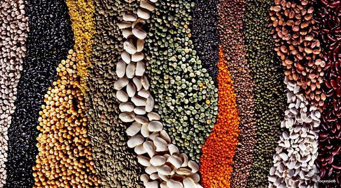 l_4639_l-anno-dei-legumi